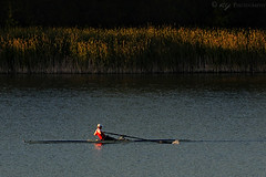 Rowing a Single | by KY Design and Photography