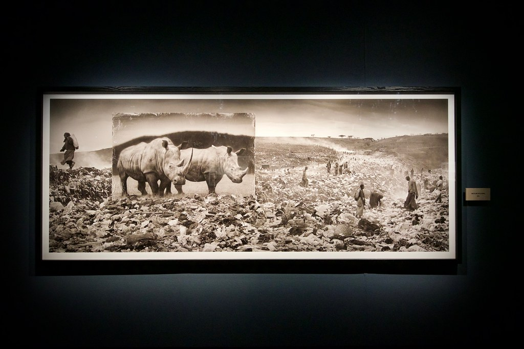 Nick Brandt Exhibit at Fotografiska