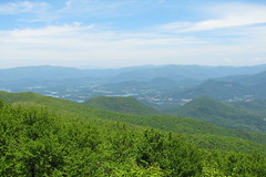 view from Brasstown Bald, Georgia's highest mountain | by Vicki's Nature