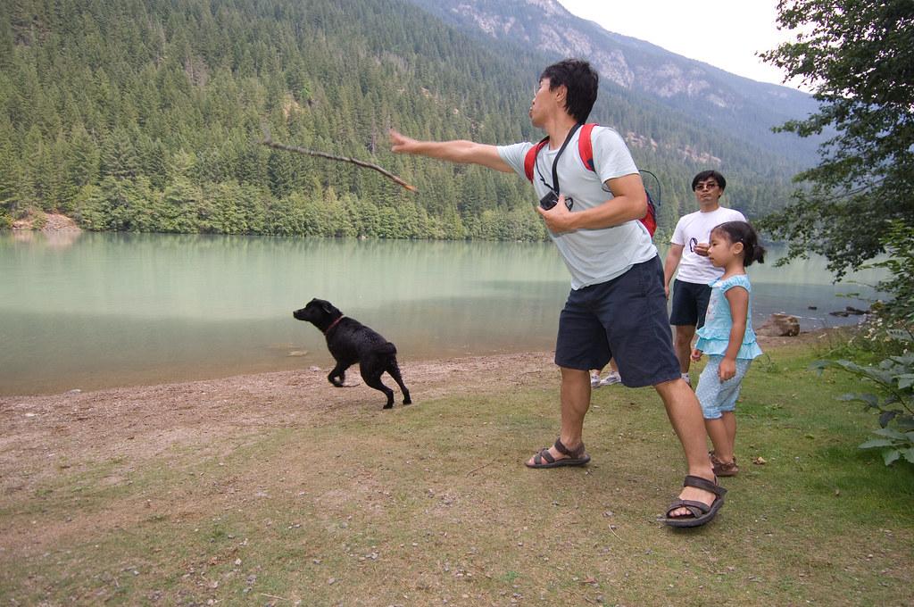 Dog Park North Vancouver