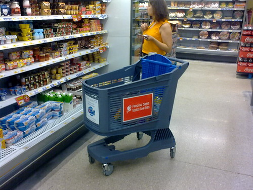 Woman Shopping with Blue Plastic Shopping Cart. | by Polycart