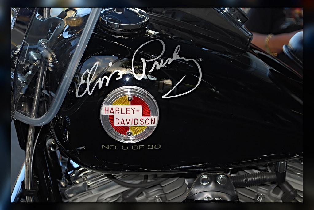 Bruce Rossmeyer S Daytona Harley Davidson Gift Card Balance