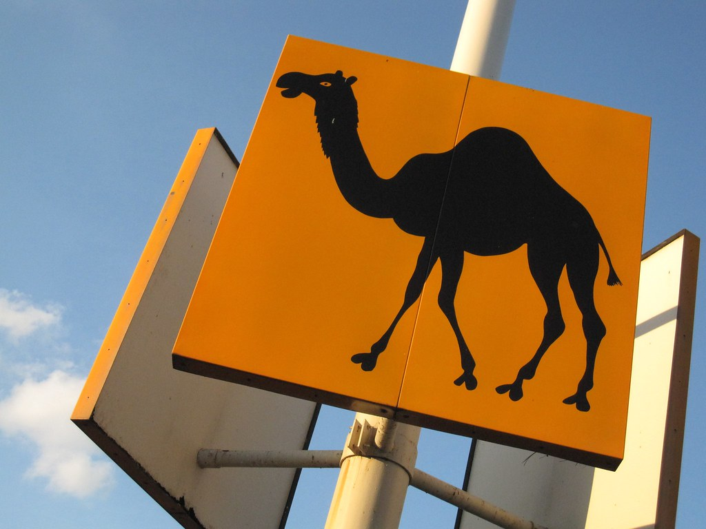 camel parking lot section sign from brookdale mall