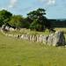 Bronze Age Grave
