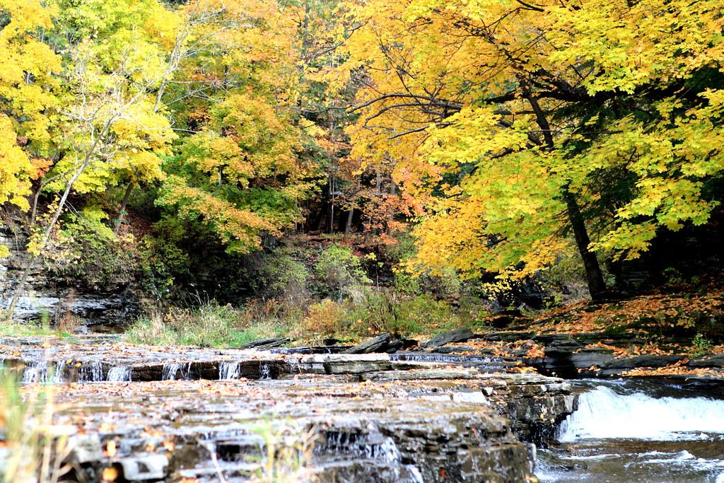 Fall Creek Ithaca Apartments