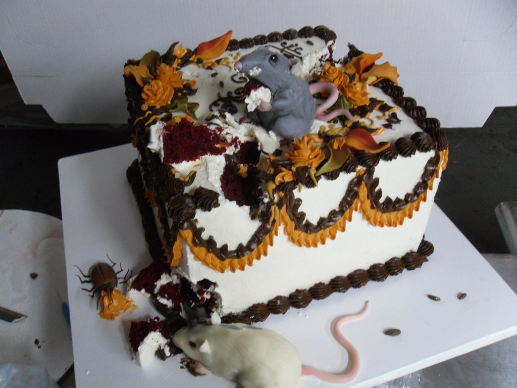 Rat Halloween Cake White Chocolate Rats And Roaches