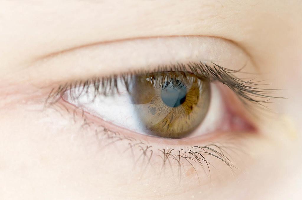 ojos color miel nelson hernandez flickr