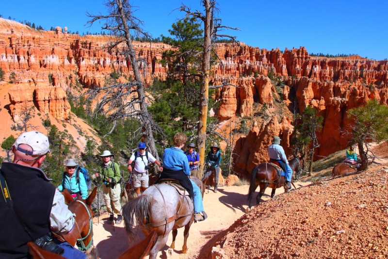 IMG_4885 Mule Ride, Bryce Canyon National Park