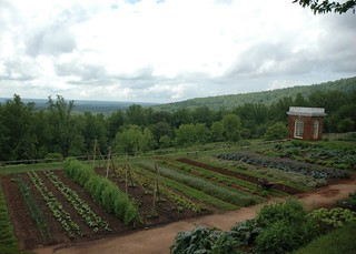 monticello garden | by shanna murray