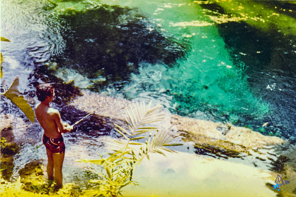 1974 - lac fwa