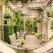 Swift Family Garden