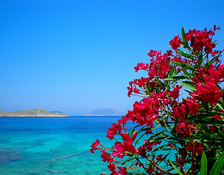 Greek Beauties ... | by pantherinia_hd Anna A.