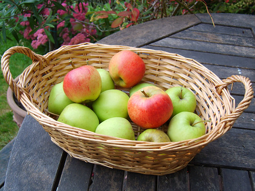 Basket of apples | by andrew.dubock