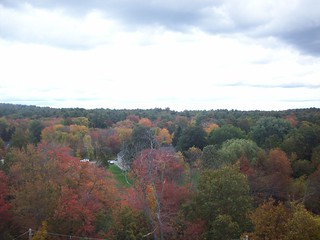 Foliage as seen from the Ferris Wheel | by mia3mom