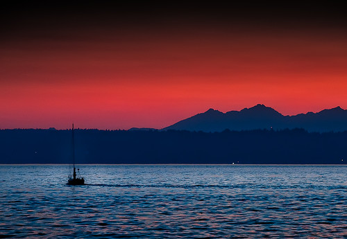 Sailors Delight | by l.gallier