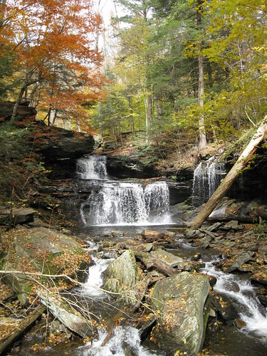 Ricketts Glen State Park - Pennsylvania | by Dougtone