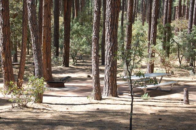 Ponderosa campground flickr photo sharing for Ponderosa cabins california