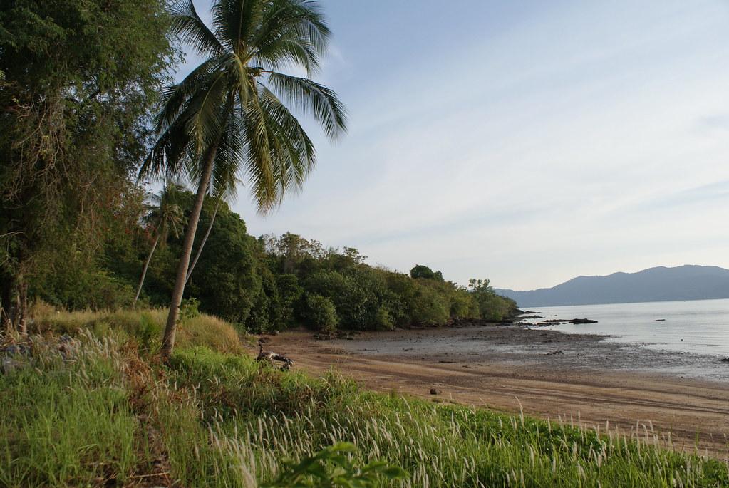 Sur l'île de Koh Lanta Noi, un varan venait de dévaler à tout allure le long de la plage.