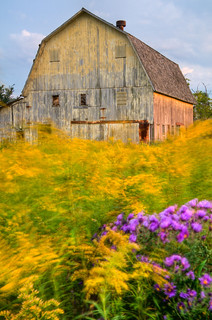 Yellow Barn | by Pure Michigan