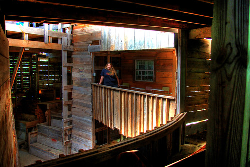 Alexis Lienhart, Minister's Tree House, Crossville, TN | by Chuck Sutherland