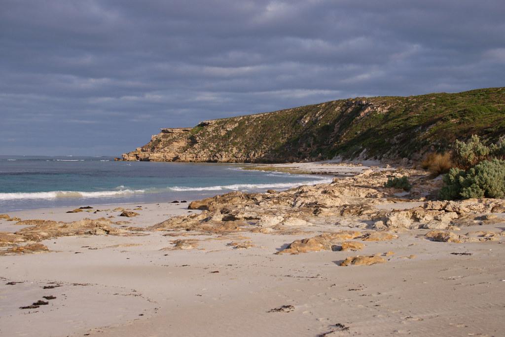 Kangaroo Island Free Range Eggs Stockists