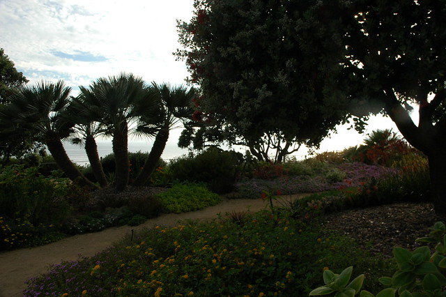 Path To The Sea And Outer Building Palm Trees Flowering Plants Through The Meditation Garden