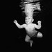 Baby Dive