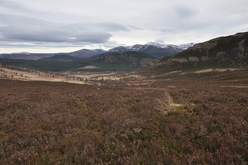 Lochnagar from Meall Gorm