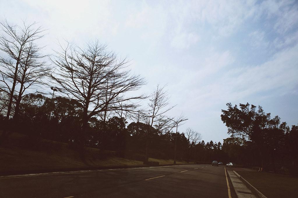 心象攝影-冬