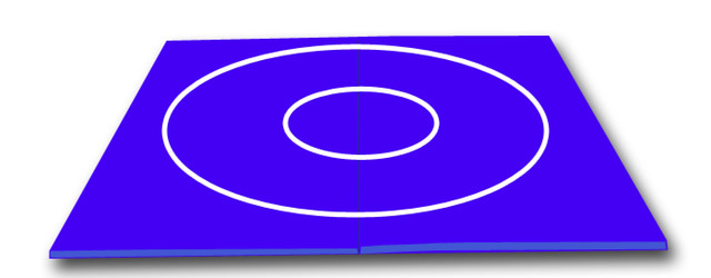 Blue Wrestling Mat With White Circles 10 X 10 X 1 3 8