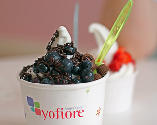 Yofiore Yogurt in Annapolis | by Mr.TinDC