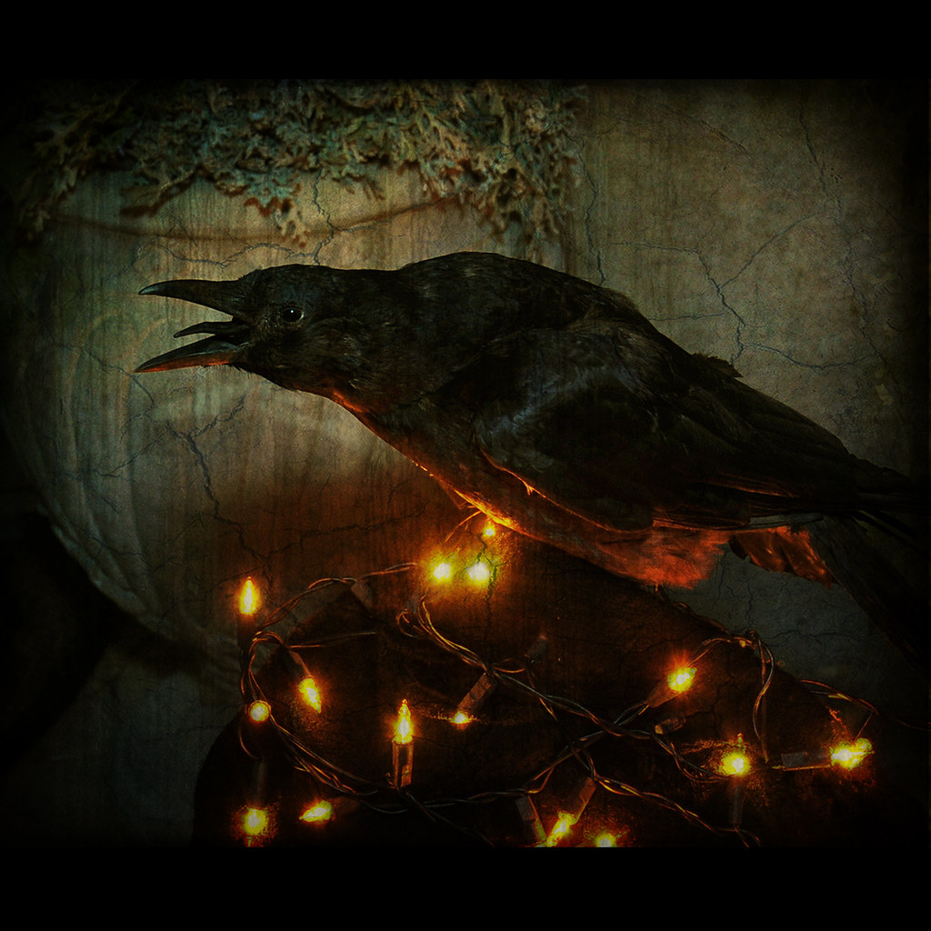 Quoth The Raven Quot Nevermore Quot But The Raven Still