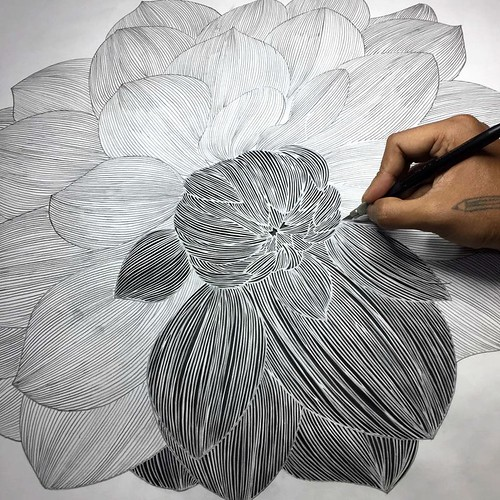 Papercut Flower in progress by Parth Kothekar