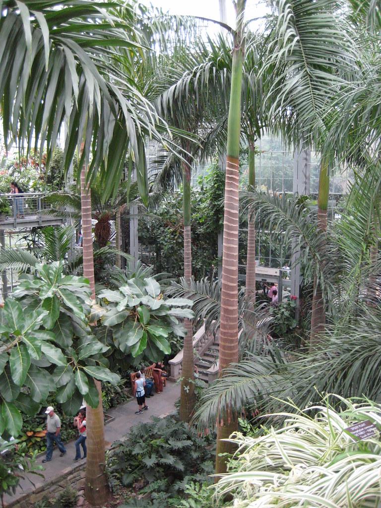 National Botanical Garden Dc Trip 09 National
