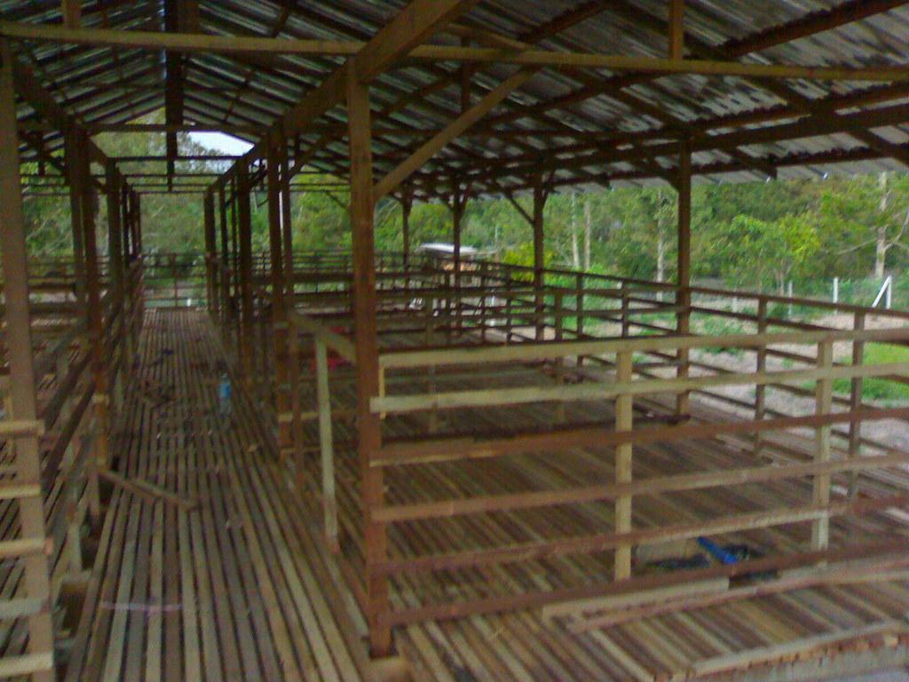 Cantik - Kandang Kambing Usrah | Usrah Agro Farm | Flickr