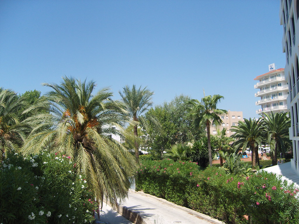 Hotel Mallorca Palma  Sterne