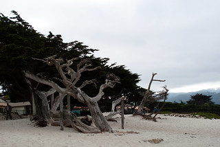 Carmel-by-the-Sea | by HarshLight