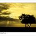 The time of sunset تصوير محمد السويح