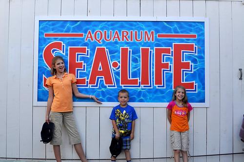 Image Result For Sango Aquarium