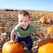 Axe & Pumpkins