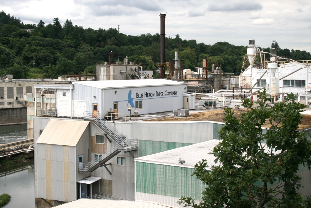 blue heron paper Blue heron paper, a paper recycling and manufacturing company in oregon city, oregon, announced on wednesday that is was shutting its doors for good citing.