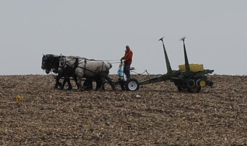 Horse Drawn Corn Planter A Man Using Horses To Plant Corn Flickr