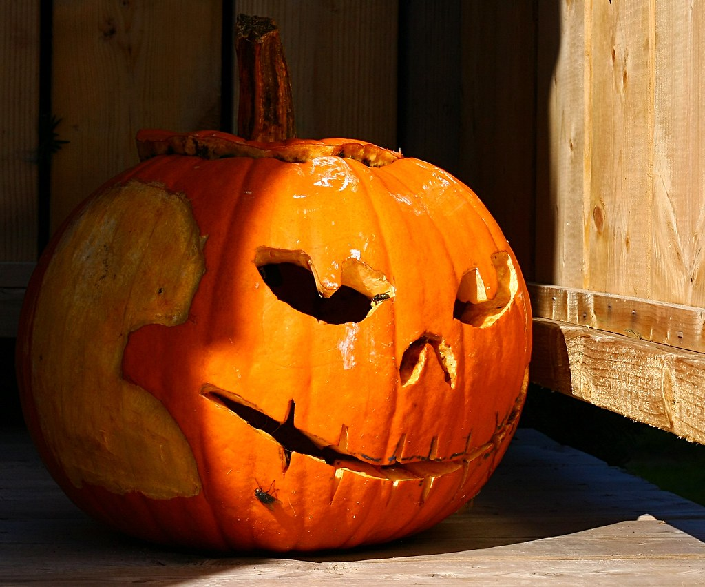 60 Best Pumpkin Carving Ideas Halloween 2018  Creative