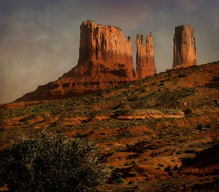 Sagebrush in Monument Valley | by Raw Light Photography