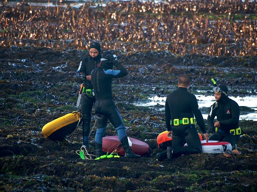 Abalone Divers in Mendocino | by Ingrid Taylar