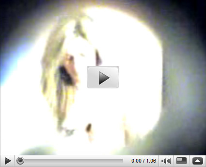Watch erin andrews peephole tape video images