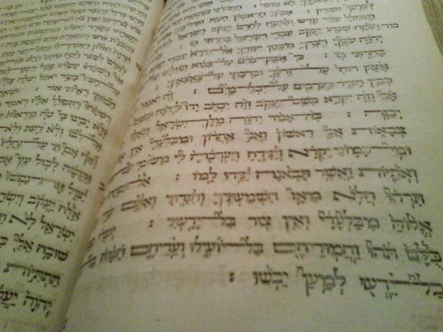 elias hutter hebrew bible