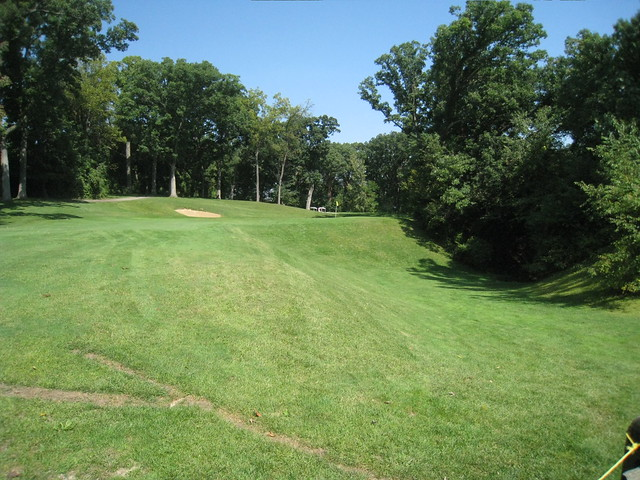 Cog golf course stock options
