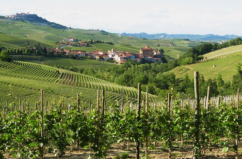 TorreBarolo - Surrounded by vineyards 2 | by TorreBarolo
