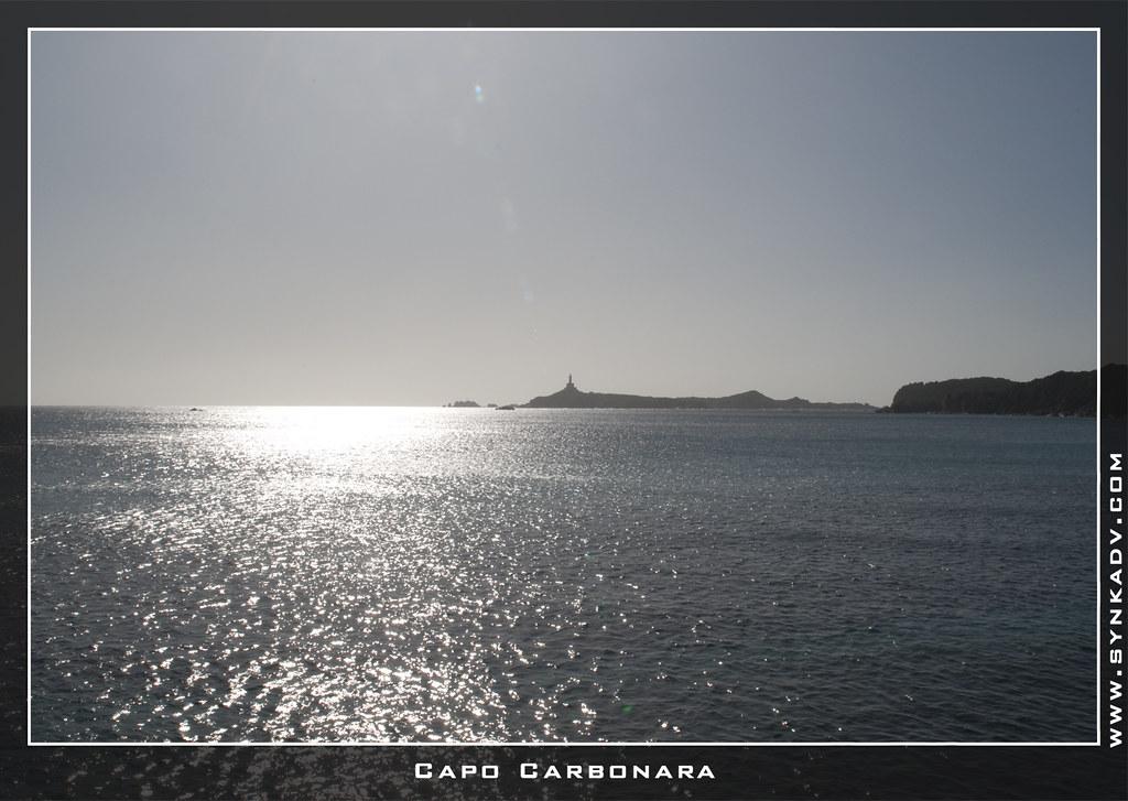 Capo Carbonara | www.synkadv.com | Daddy | Flickr